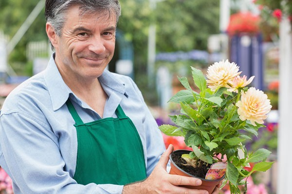 Male florist holding a flower while smiling