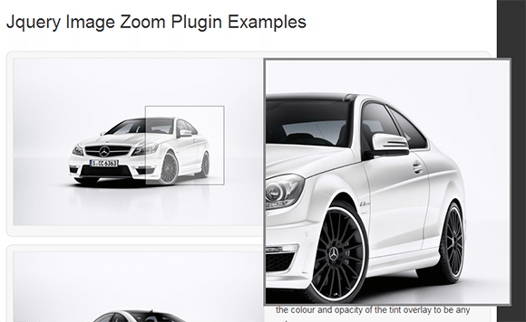 Image-Zoom-Plugin