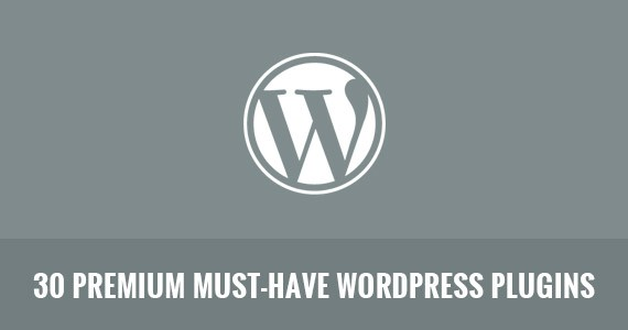 30 Premium Must-Have WordPress Plugins