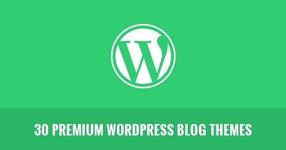 30 Premium WordPress Blog Themes