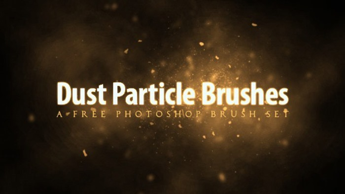 Dust Particle Brush Set