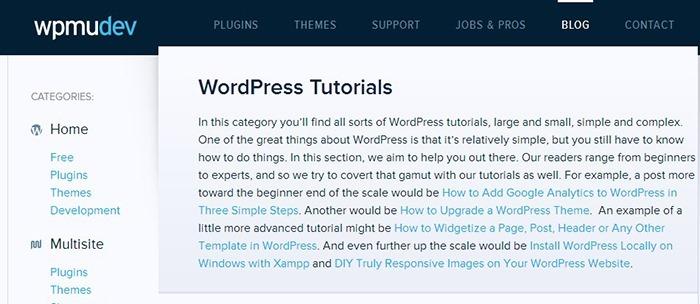 Wordpress - Magazine cover