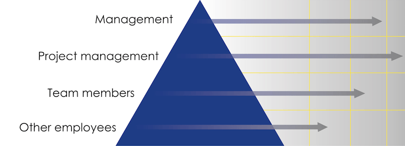 Vertical management hierarchy structure. © IAD