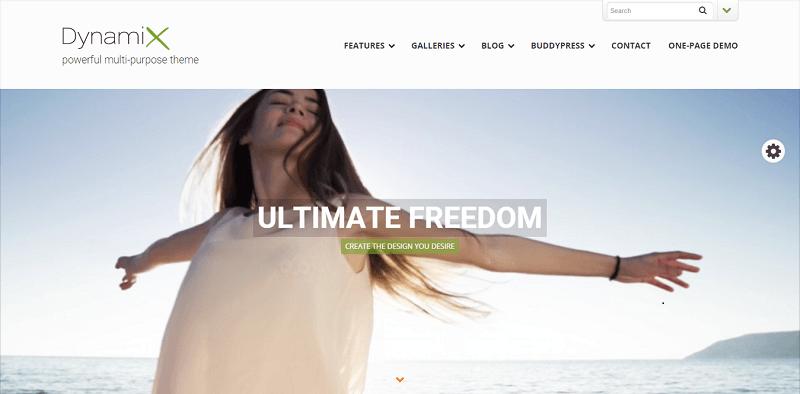 2015_06_25_10_16_46_DynamiX_powerful_multi_purpose_theme