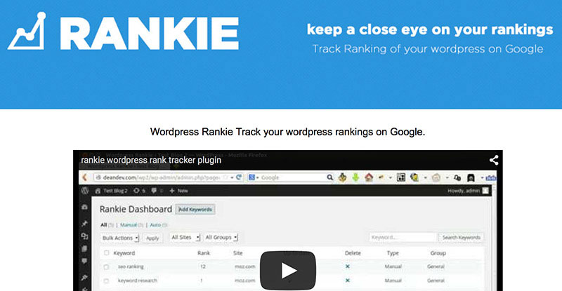 Keep track of your keyword rankings on Google straight from your dashboard.