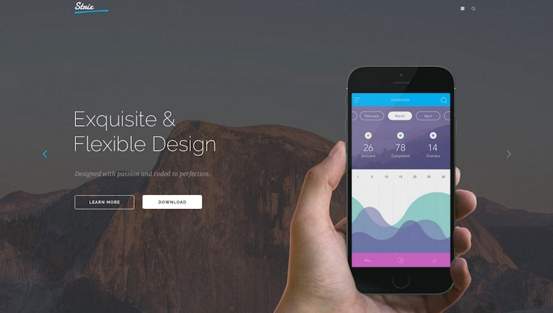 STRIX - Multipurpose PSD Template
