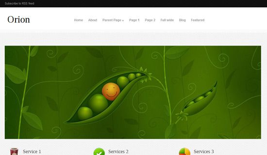 Orion free wordpress theme