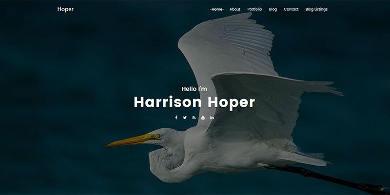 Hoper WordPress Theme