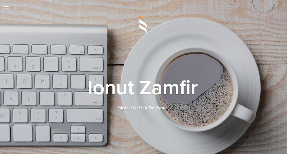 ionut zamfir portfolio design