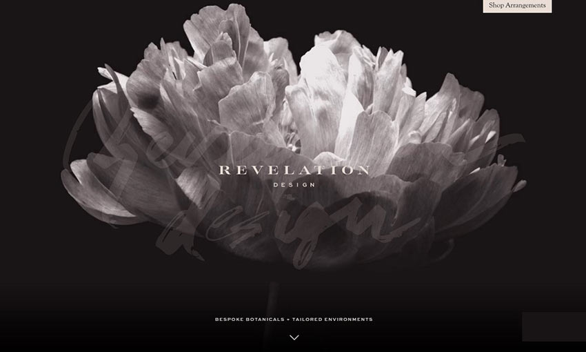 Screen capture from Revelation Design