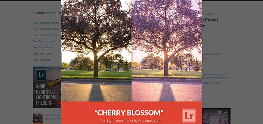 Supercharge Your Photos with 15+ Free Lightroom Presets - 1stWebDesigner