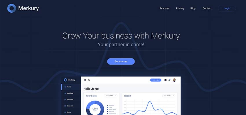 Merkury Business Template