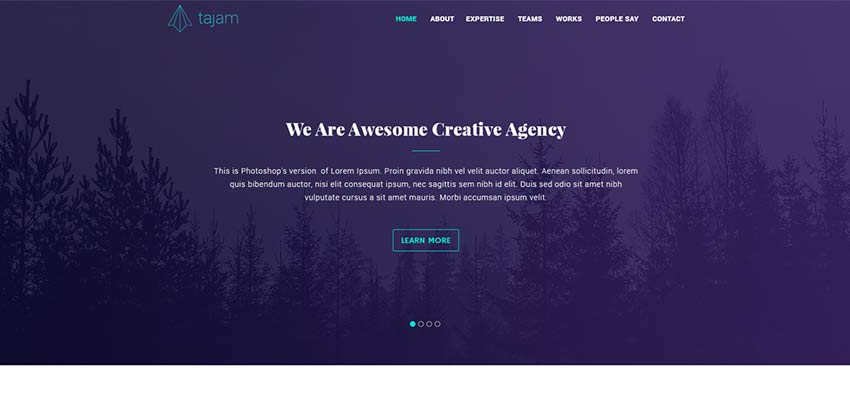 Agency Website PSD