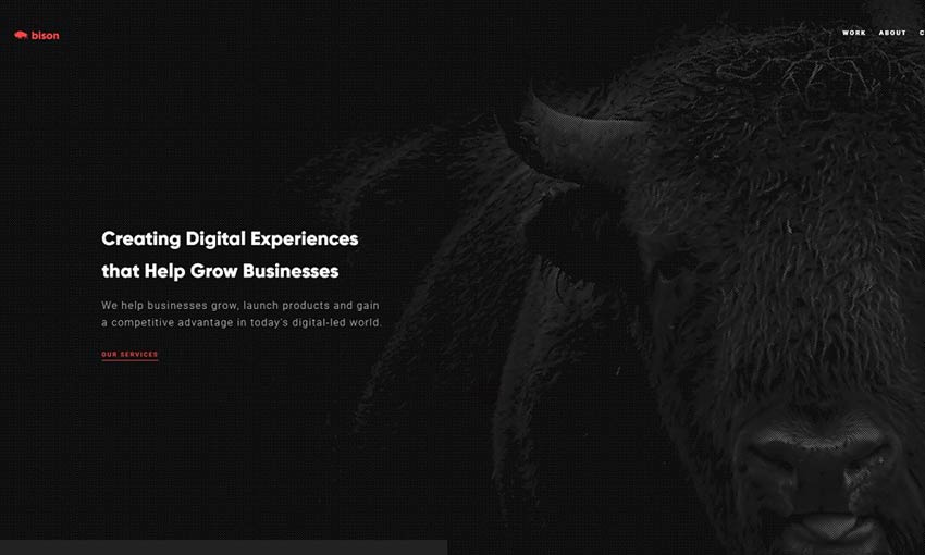 Bison Studio dark web design