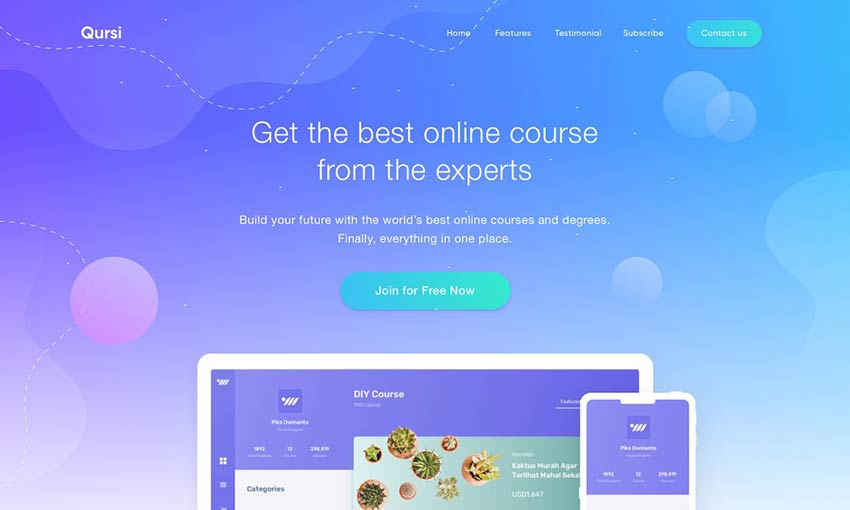 DIY Course Landing Page