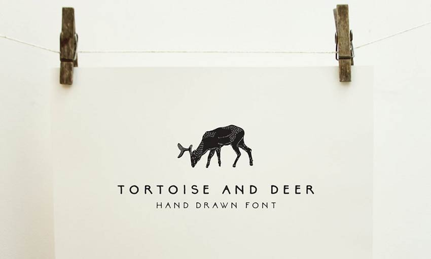 Example of Tortoise and Deer by Emma Make