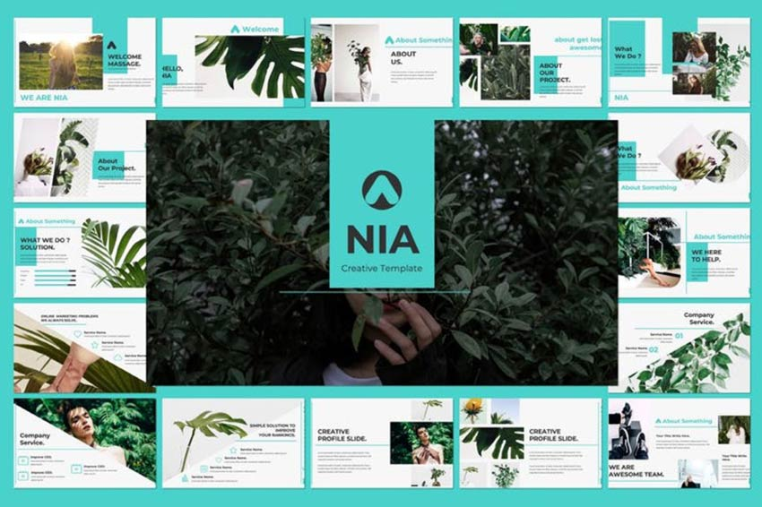 Example of Nia Pitch Deck