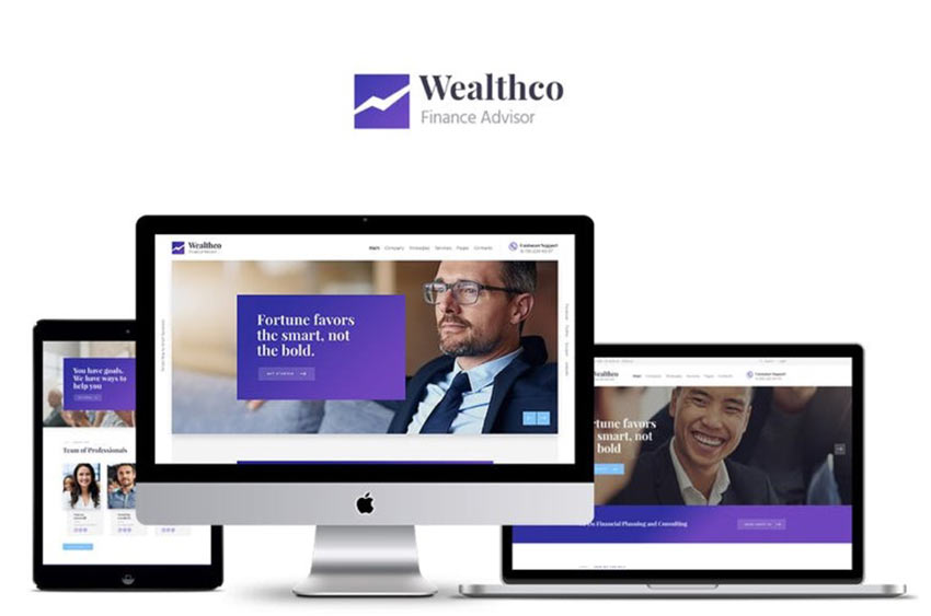 Example of WealthCo