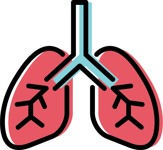 Free icon set - Lungs