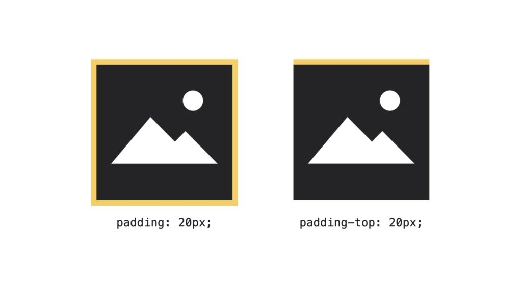 CSS basics padding